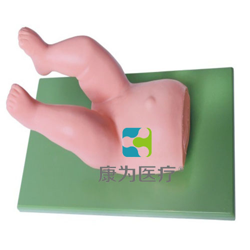 """""""康为医疗""""婴儿髋关节复位操作模型"""