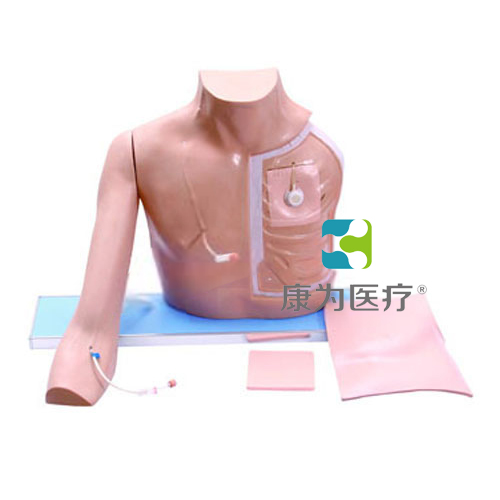 """""""康为医疗""""静脉介入训练模型(带手臂),静脉介入操作模型(带手臂)中心静脉插管(PICC)模型"""