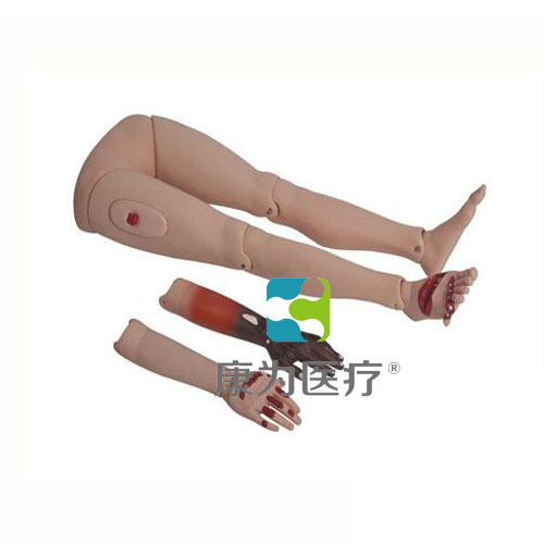 """""""康为医疗""""高级创伤四肢模型"""