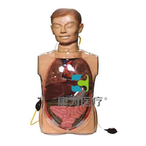 """""""康为医疗""""多功能透明洗胃训练模型"""