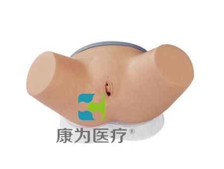 """""""康为医疗""""高级整体女性导尿模型操作"""