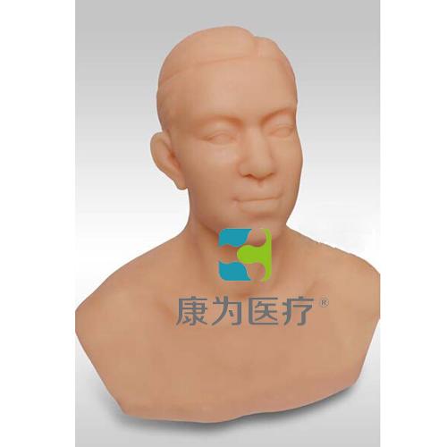 """""""康为医疗""""针灸头部训练模型"""