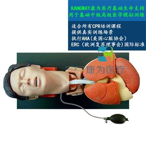 """""""康为医疗""""高级气管插管训练仿真模型"""