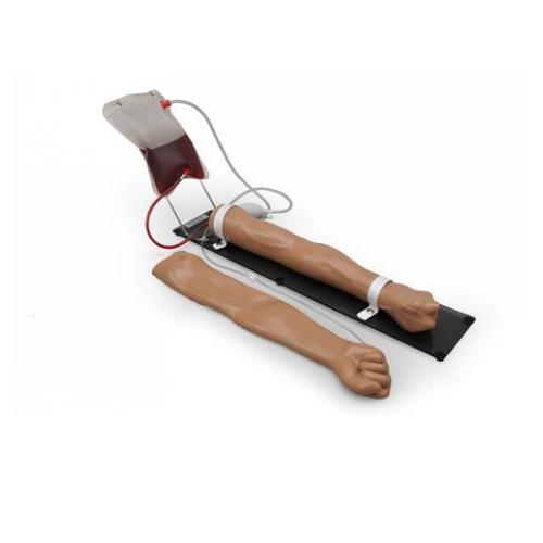 德国3B Scientific®静脉注射训练手臂
