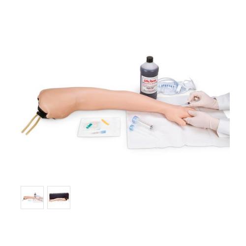 德国3B Scientific®I.V. & I.M注射用手臂模型
