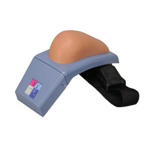 德国3B Scientific®带报警装置的上臂肌肉注射模拟器