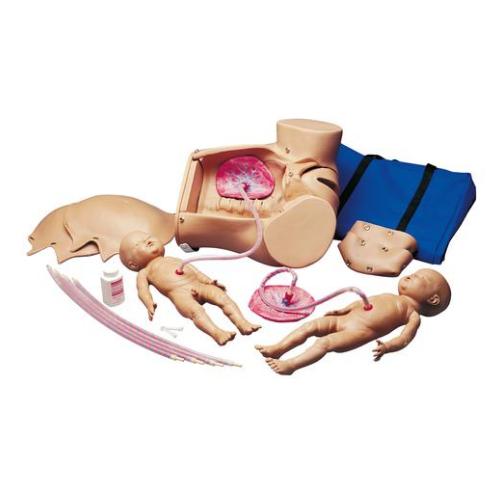 德国3B Scientific®婴儿出生模型