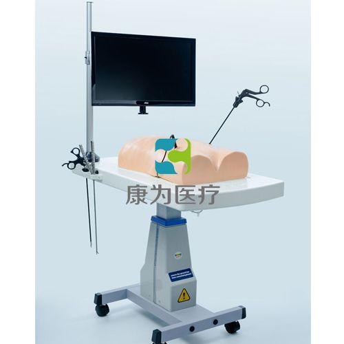 """""""康为医疗""""仿人体腹腔镜操作训练仪"""
