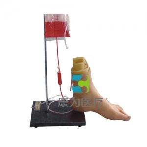 """""""康为医疗""""下肢足部静脉注射仿真模型"""