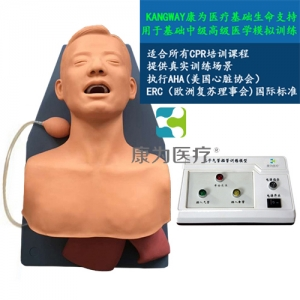 """""""康为医疗""""高级成人气管插管训练模型,成人气管插管模型"""