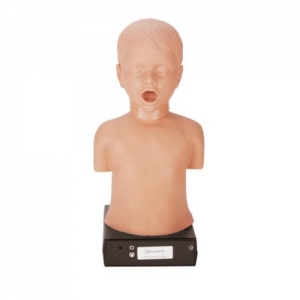德国3B Scientific®儿童心肺听音培训装置