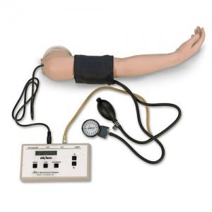 德国3B Scientific®血压手臂模型- 5岁大儿童