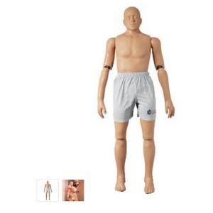 德国3B Scientific®救助模型,167cm/25kg
